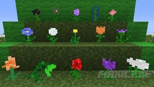 1.7.2 цветы