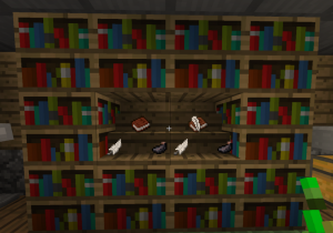 Книжный с полкой шкаф майнкрафт